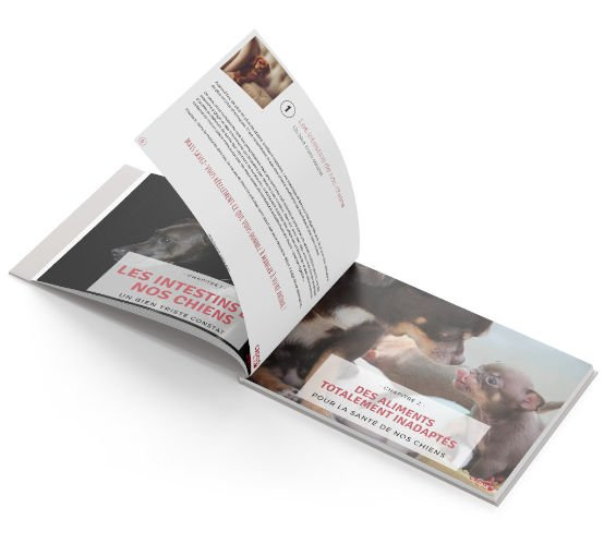 open-book-bg-lp-diarrhees-light