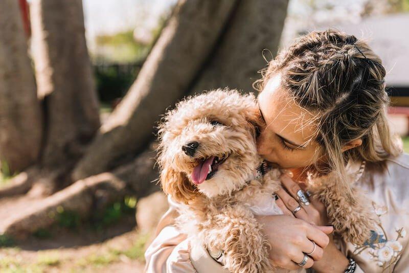La nourriture est bien souvent l'origine des infections urinaires chez le chien