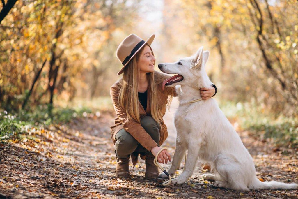 Les protéines et graisses de mauvaise qualité, ainsi que les fruits et légumes, participent à la mauvaise haleine de votre chien