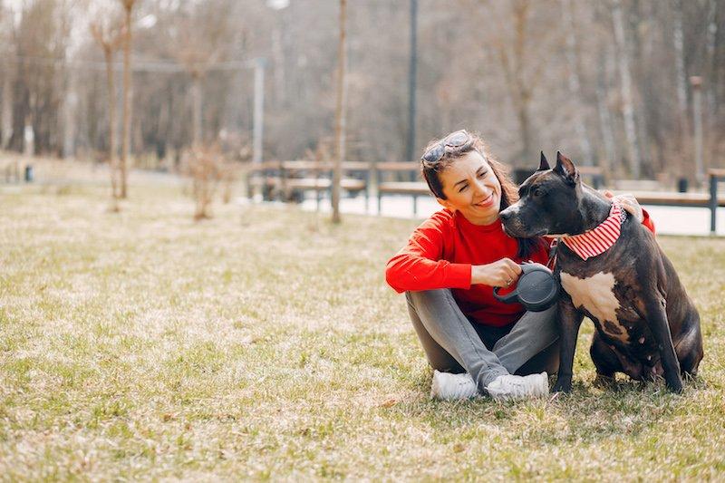 Que faire si mon chien se gratte encore après une bonne alimentation ?