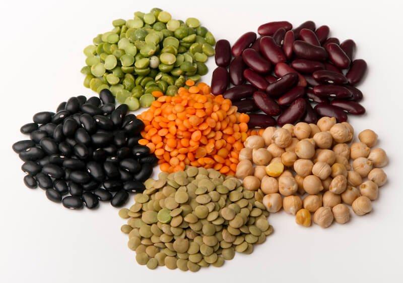 Alerte croquette ! Les légumes et légumineuses sont des aliments qui peuvent provoquer des cardiomyopathies chez le chat et le chat