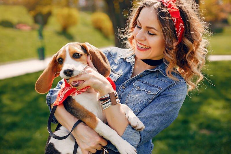 Les critères de qualité alimentaire à respecter pour éviter la récidive des diarrhées avec glaires chez le chien