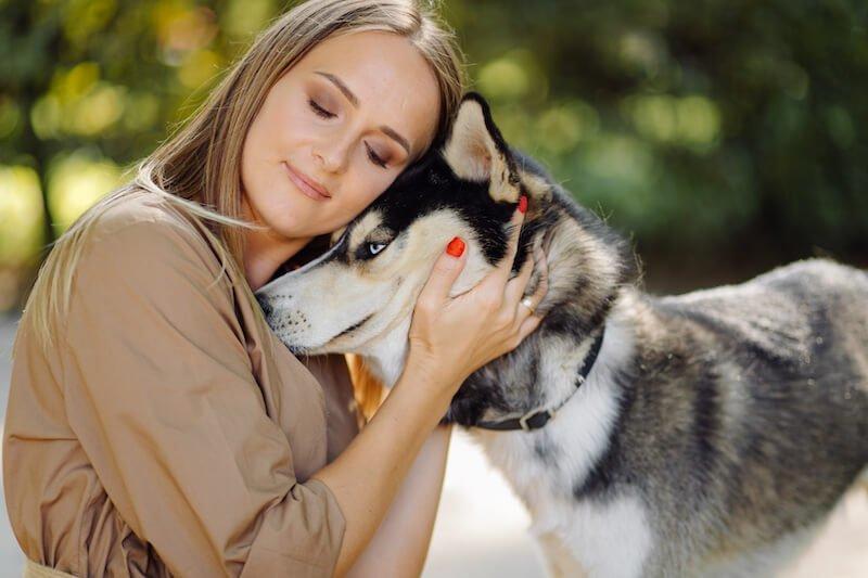 Quel traitement contre les selles glaireuses chez le chien ?