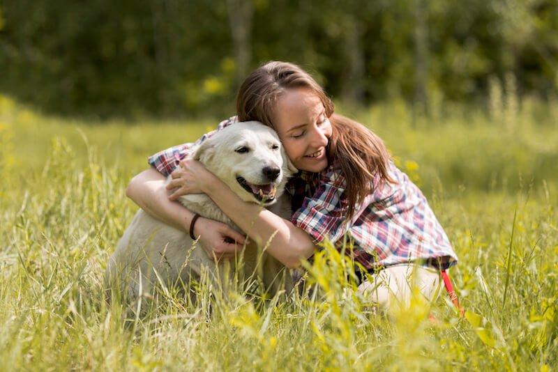 Le chien, carnivore domestique, a besoin d'une alimentation adaptée à ses besoins biologiques et naturels