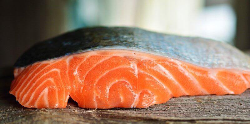 Les croquettes pour chien au saumon ne sont pas forcément meilleures pour sa santé