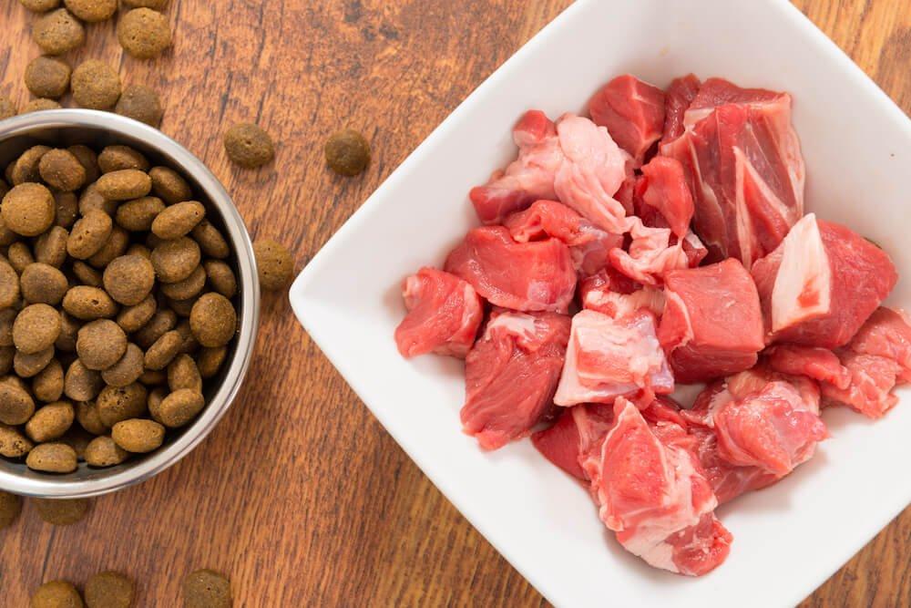 """Quelle est la croquette idéale, avec ou sans """"viande fraîche"""", pour la santé de votre chien ?"""
