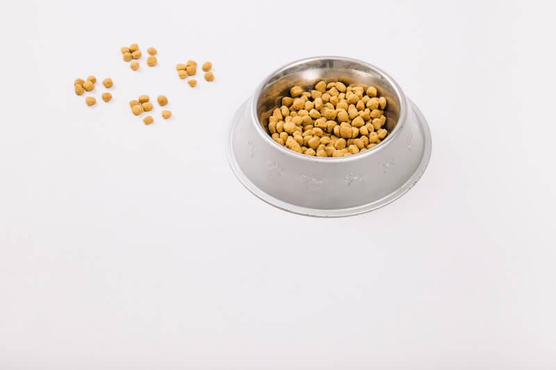 Votre chien a besoin d'une bonne alimentation, adaptée à ses Besoins Biologiques et Naturels, pour affronter les vers, la Giardiose ou la Coccidiose