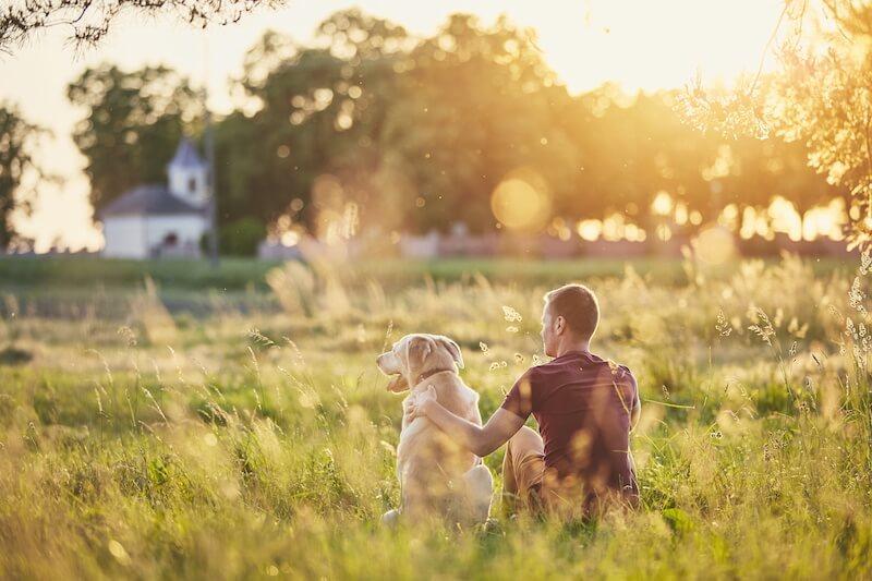 Les substances gluantes dans les selles du chien proviennent bien souvent d'une alimentation non-adaptée à ses Besoins Biologiques et Naturels
