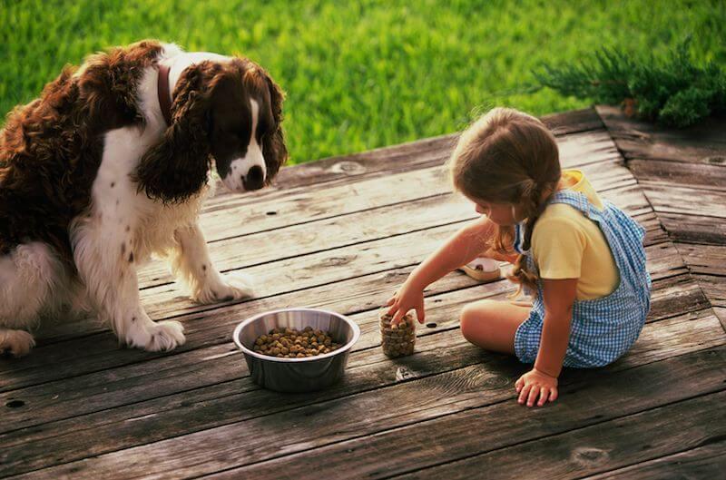 L'alimentation est la meilleure façon de régler définitivement les problèmes de diarrhée chez le chien, en complément de l'ultra-levure si nécessaire