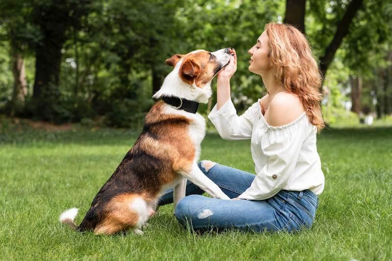 La meilleure croquette hypoallergénique pour chien est celle qui répond à ses besoins originels