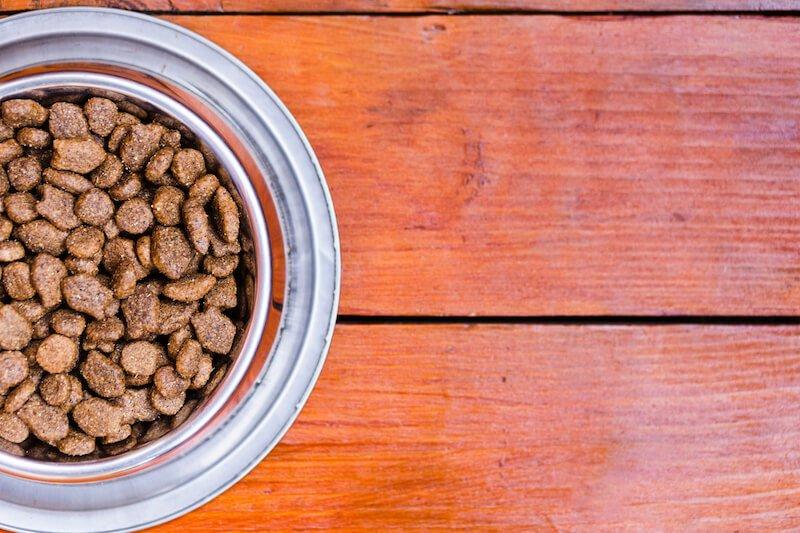L'alimentation joue un rôle crucial dans la lutte contre la démodécie du chien