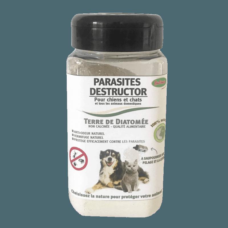 La terre de Diatomée permet de limiter la propagation de la démodécie du chien