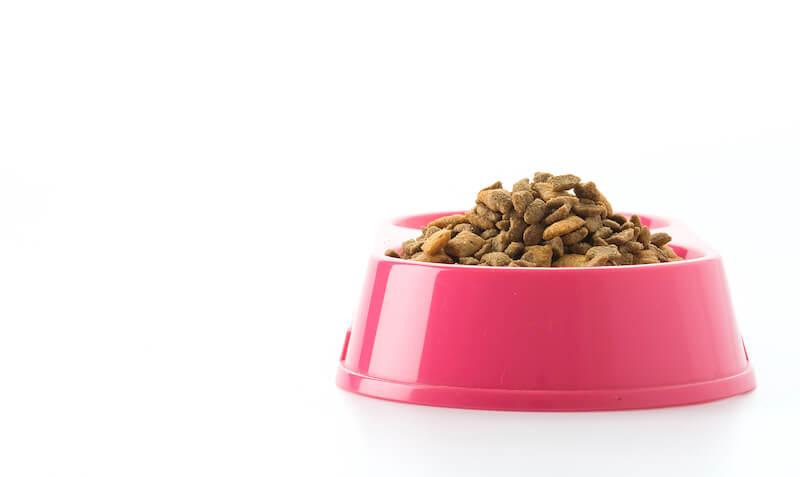 Le détartrage du chien sans anesthésie ne peut pas se passer d'une nourriture adaptée à ses besoins originels