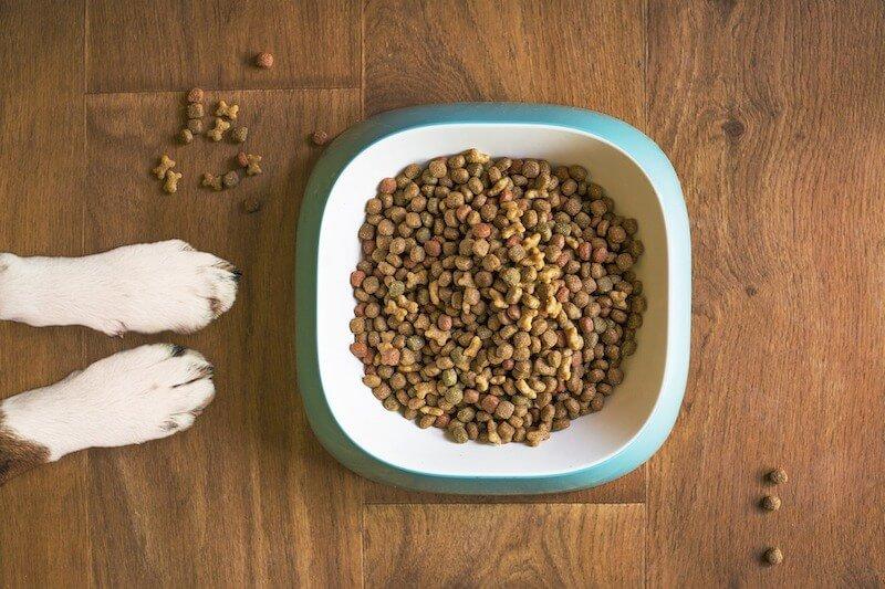 L'alimentation nécessaire pour un effet anti-tartre naturel... bien sûr que le bicarbonate contre le tartre du chien