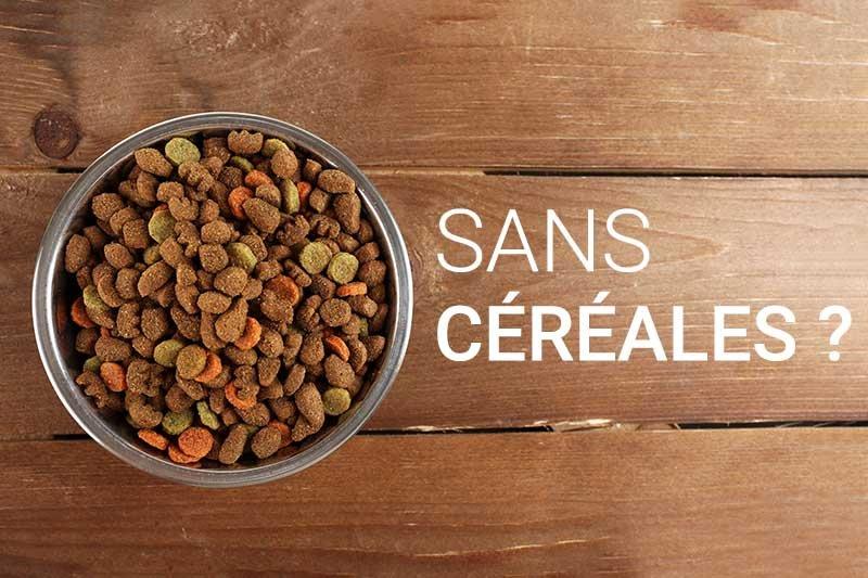 Que penser des croquettes pour chat sans céréales ?