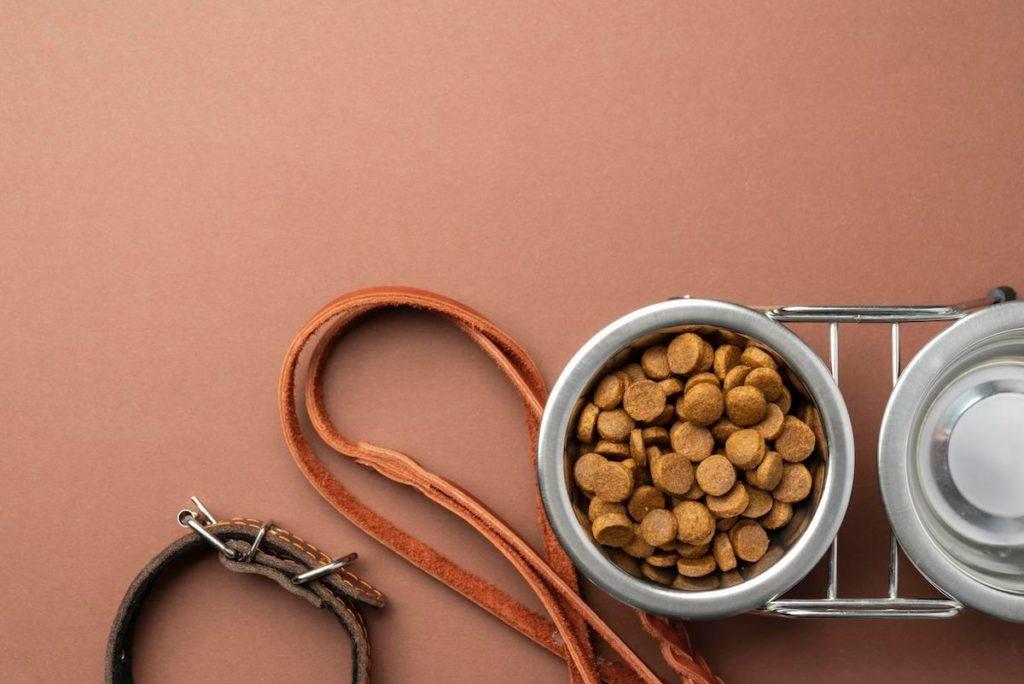 La vermifugation au Dolthene pour chien doit toujours s'accompagner d'une alimentation adaptée et de qualité pour assurer la santé de votre animal